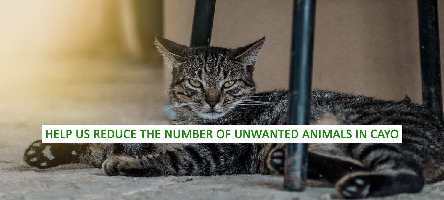 CAWS_Unwanted_Pets_Banner